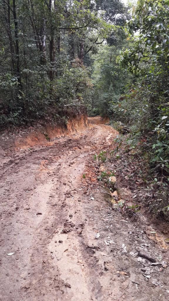 ทางรถวิ่งชันมาก โคลนเละมากๆ นอกจากได้เดินป่ายังแถมทริป off-road มาด้วย มันส์เลย